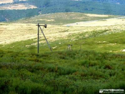 El Calvitero _ Sierra de Béjar y Sierra de Gredos;el bosque de finlandia en madrid el carro del dia